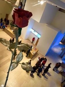 Visão interna da fundação Louis Vuitton com uma rosa em destaque